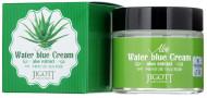 Увлажняющий крем для лица с экстрактом алоэ JIGOTT Aloe Water Blue Cream: фото